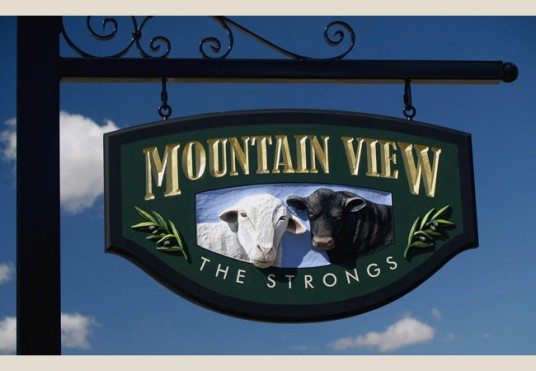 Mountain View Property Sign