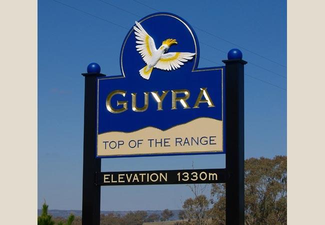 Image result for guyra