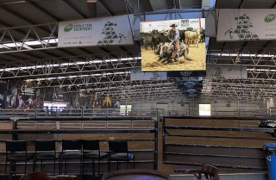 indoor-led-rodeo-venue-display-sign-australia
