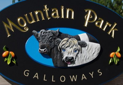 Mountain Park Property Sign