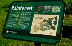 boroondara rainforest sign