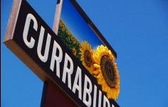 close_up_of_Currabubula_town_entry_sign