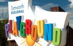 sign-in-tamworth-nsw-with-3d-elements-and-wood-grain